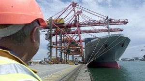 Stevedore Cargo Services
